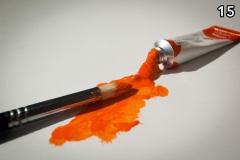 Concorso-Arancione-15