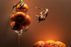 Concorso-Arancione-27