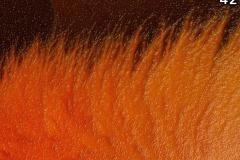 Concorso-Arancione-42